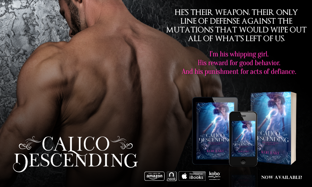 Release Day: Calico Descending by Keri Lake